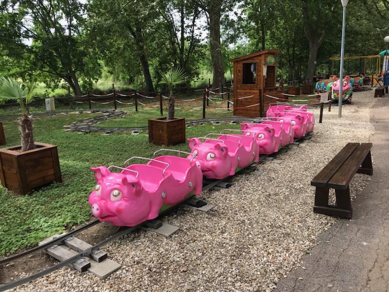 Train les petits cochons